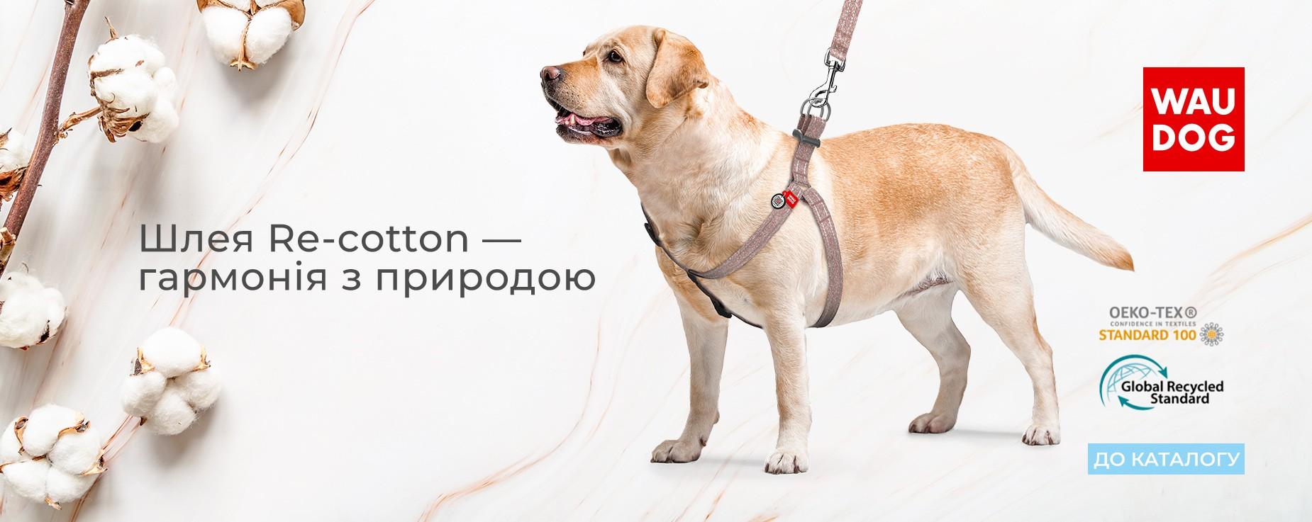 harness-recotton